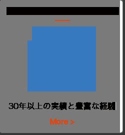 service_bnr_audit